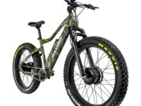 The Krusader 500 Watt E-bike
