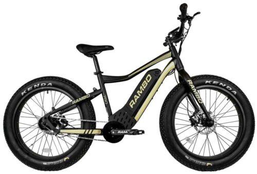 The Ryder 750 Watt E-bike