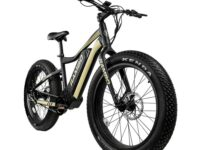 The Ryder 750 Watt E-bike