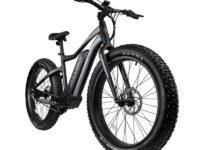 The Pursuit 750 Watt E-bike