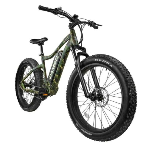 The Roamer 750 Watt E-bike