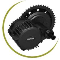 Ryder motor