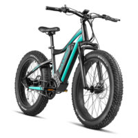 750 24 Ryder (Matte Black and Teal) Angle 2 Shadow
